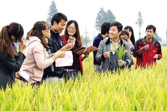 大学生用勤奋和热情完成角色的转变(大学生村官工作感悟)