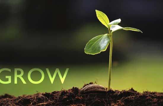 如何在面试失败中收获成长,收获offer.jpg