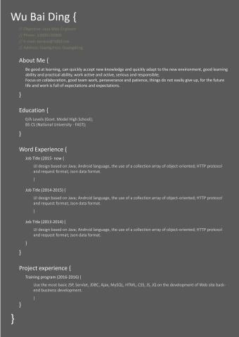 代码风格 程序员英文简历