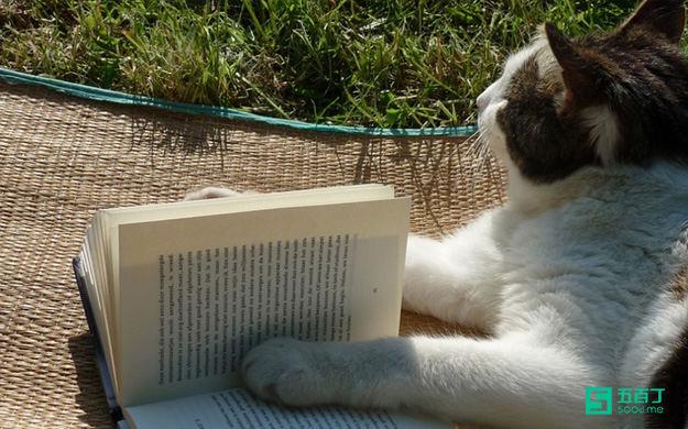 不爱看书的人是如何变得爱看书的?